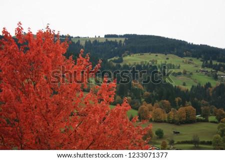 Mountains in Austria Österreich Europe Alpen