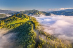 Mountains in clouds at sunrise in summer. Aerial view of mountain peak with green trees in fog. Beautiful landscape with high rocks, forest, sky. Top view from drone of mountain valley in low clouds