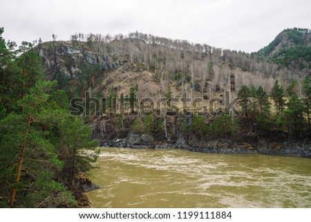 Mountains in earthy tones with forest cover and mountain river in spring time. Coniferous trees. Power lines in highlands. Electricity in nature. Amazing atmospheric landscape. Steep rocky slope.