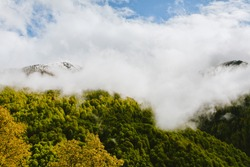 Mountains in fog Landscape with mountain valley low clouds forest colorful sky nature illuminated at dusk. Misty landscape with fir forest. Scenic photo of Caucasian nature with copy space