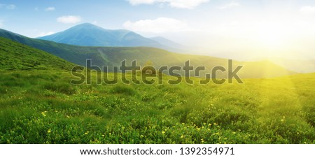 Mountains landscape in the summer time