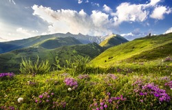 mountains, Morning in mountains, the blue sky and a green grass