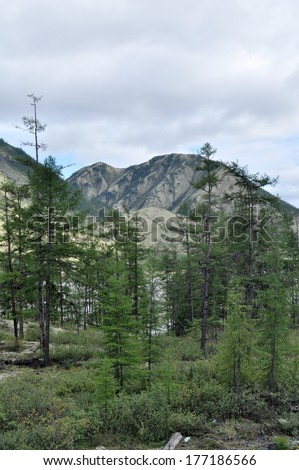 Mountains of Yakutia in the late summer. The Federal highway \