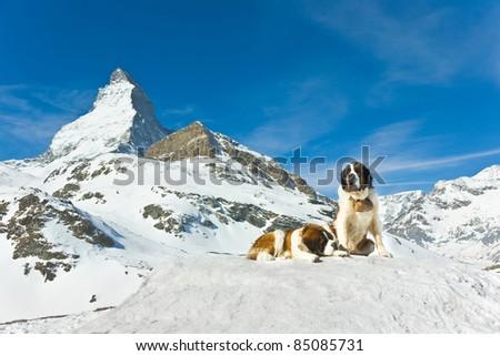 mountains rescuer