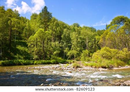 Mountains river in sunny day. Cuba river, Altai, Siberia