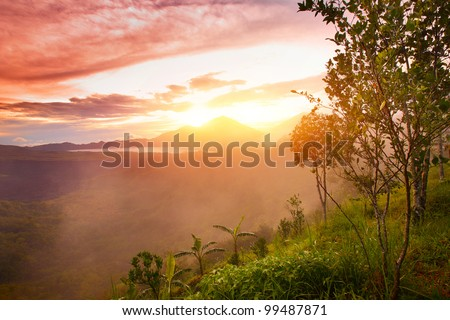 Mountains with lake and green lush meadow with tree on a hill side