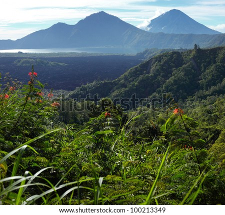 Mountains with lake (Batur) in caldera and green bush grass on the foreground. Bali, Indonesia