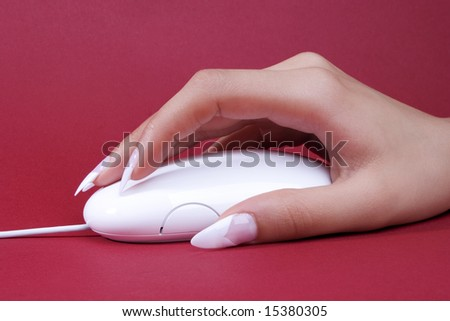 mouse Photo stock ©