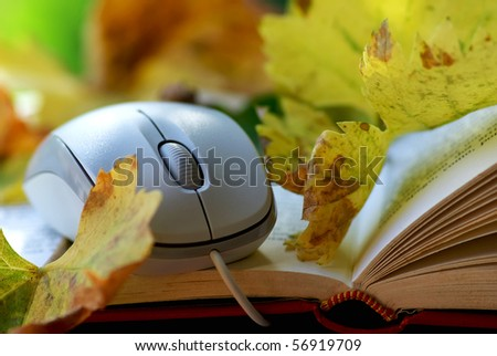 Mouse and leaves on book.