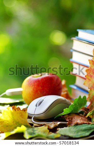 Mouse and red apple. - stock photo