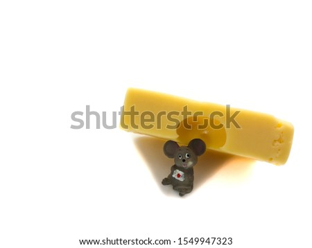 Mouse with cheese isolated on a white background. Composition of mouse and cheese. Mouse and cheese #1549947323