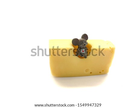 Mouse with cheese isolated on a white background. Composition of mouse and cheese. Mouse and cheese #1549947329