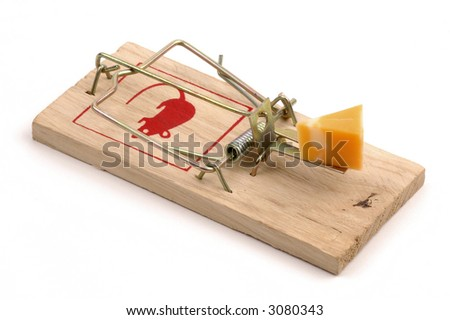 Mousetrap baited with cheese on a white background.
