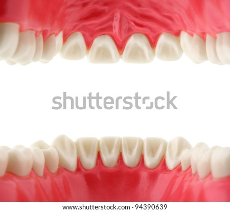 mouth with teeth from inside