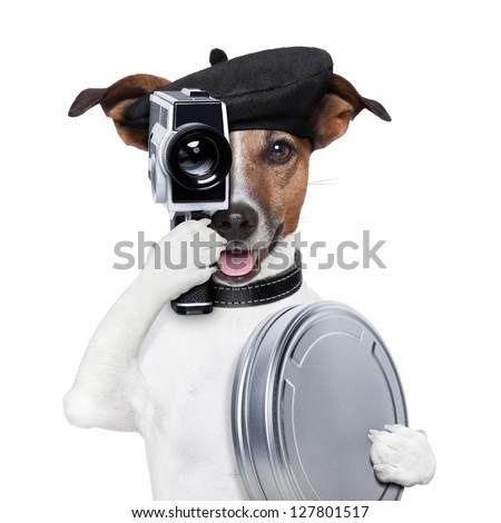 movie director dog with a vintage camera