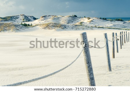 Moving dunes in Slowinski National Park, Poland Zdjęcia stock ©