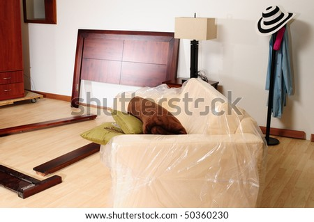 Moving in. - stock photo