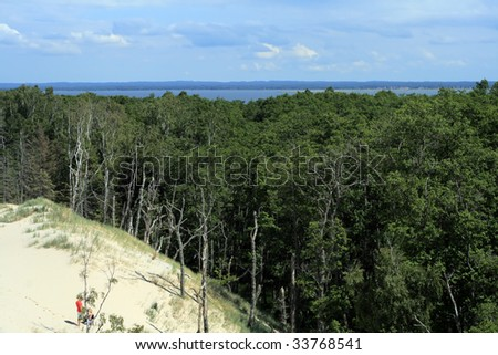Moving sand dunes forcing the forest to fall down at Leba - Poland