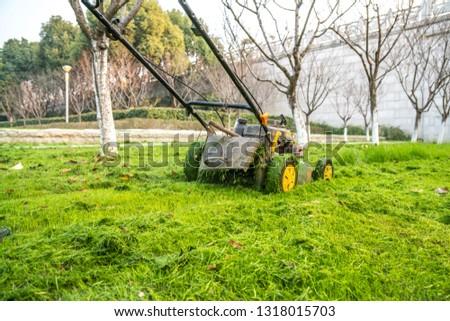 mower in gardern #1318015703