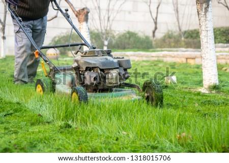 mower in gardern #1318015706