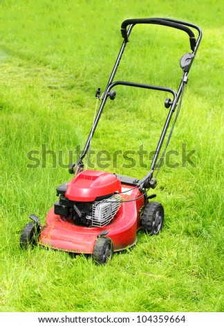 Mowing grass on a rural garden.