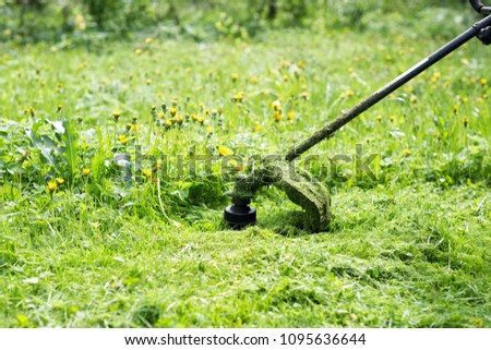 Mowing grass trimmer on the lawn #1095636644
