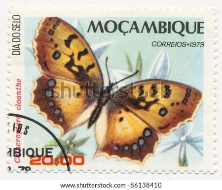 MOZAMBIQUE - CIRCA 1979: A stamp printed in Mozambique, shows Catacroptera cloanthe, series Butterflies, circa 1979