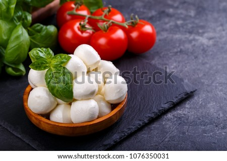 Mozzarella cheese, basil and tomato cherry on slate stone board, copy space. Ingredients for Caprese salad