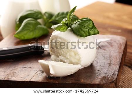 Mozzarella. Traditional italian food - white ball mozzarella buffalo Italian soft cheese with basil Сток-фото ©