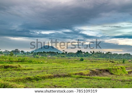 Mt. Agung (active volcano), as seen from rice fields near Ubud, Indonesia - Island of Bali [Taken in November 2017 prior to Eruption] #785109319