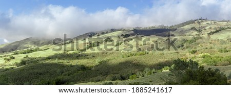 Mt Diablo Winter Terrain of Hill, Grass and Woodlands, and Foggy Blue Skies. Mt Diablo State Park, Contra Costa County, California, USA. Foto stock ©