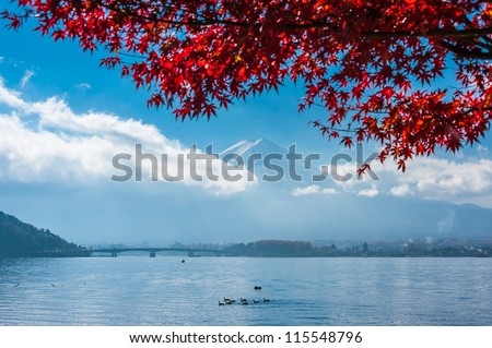 Mt Fuji and Red maple leave in Autumn color