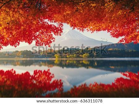 mt.fuji in autumn on sunrise at ...