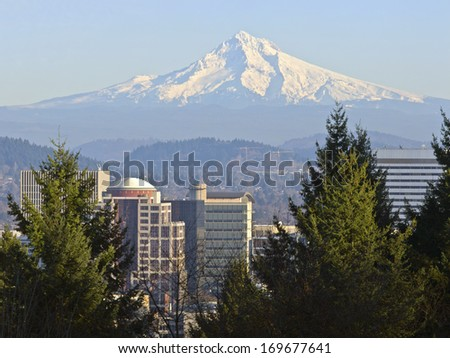 Mt Hood And Downtown Portland Oregon Buildings Stock Photo