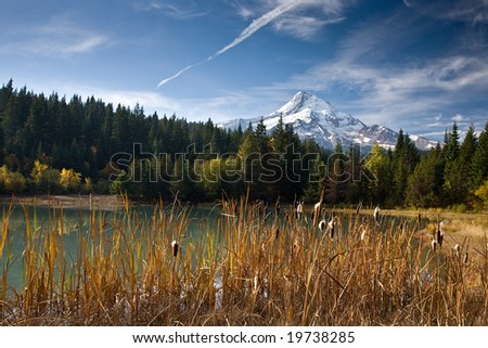 Mt. Hood in Oregon State in the fall by a lake with cat tails.