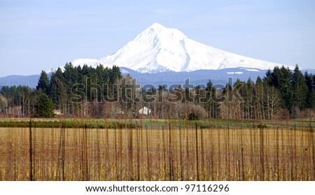 Mt. Hood in winter and a farmland in rural Oregon.