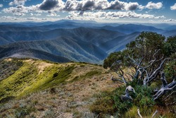 Mt Hotham Views Victorian High Country mountain view  mountain landscape view Bright