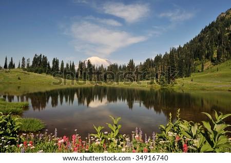 Mt. Rainier and Tipsoo Lake with summer wildflowers