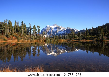 Mt Shuksan reflecting on Picture Lake, Washington-USA