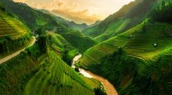 Mu Cang Chai, landscape terraced rice field near Sapa, north Vietnam