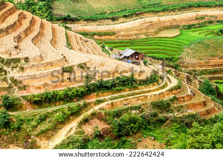 MUCANG CHAI, YENBAI, VIETNAM - MAY 17, 2014 - An ethnic house nearby the terraces. Ethnic farmer often build up houses near their paddy terraces to look after the fields with much convenience.