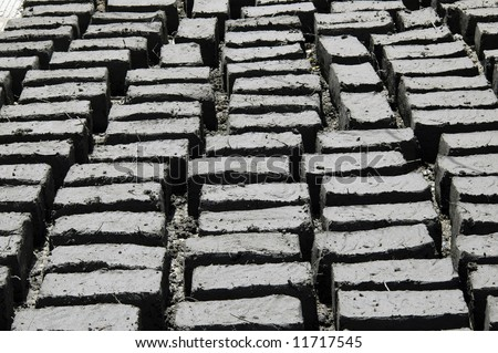 Mud bricks drying in sun at a Buddhist monastery in Ladakh, Northern India - stock photo