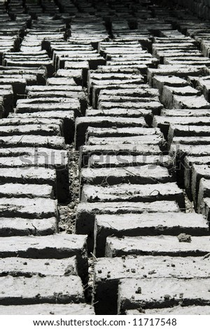 Mud bricks drying in the sun at a Buddhist monastery in Ladakh, Northern India