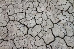 Mud cracked background (Dry cracked )