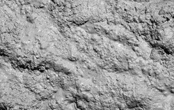 Mud texture or wet gray soil as natural background.