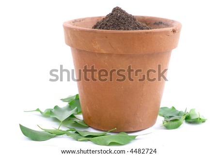 Mud vase with earth without a Plant