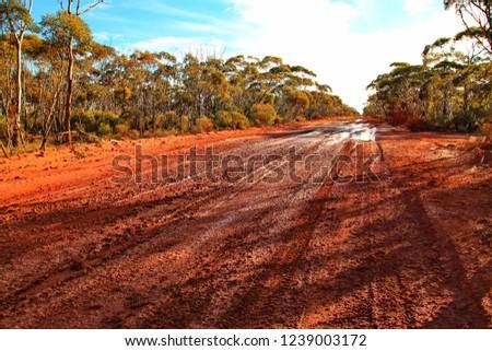 Muddy and boggy roads in Australian bush