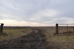 Muddy farm road in a field