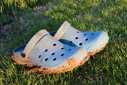 Muddy garden crocs on the spring mown lawn after the strong rain