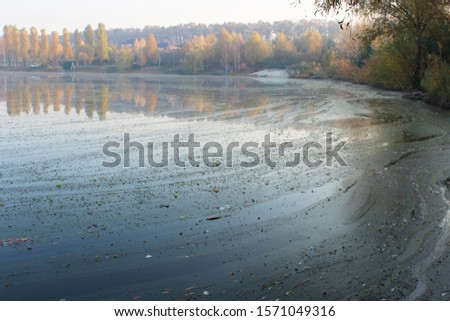 muddy water. dirty pond. dirty water surface. environmental pollution. environmental disaster. #1571049316